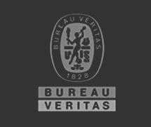 Bureau Veritas logo inverted