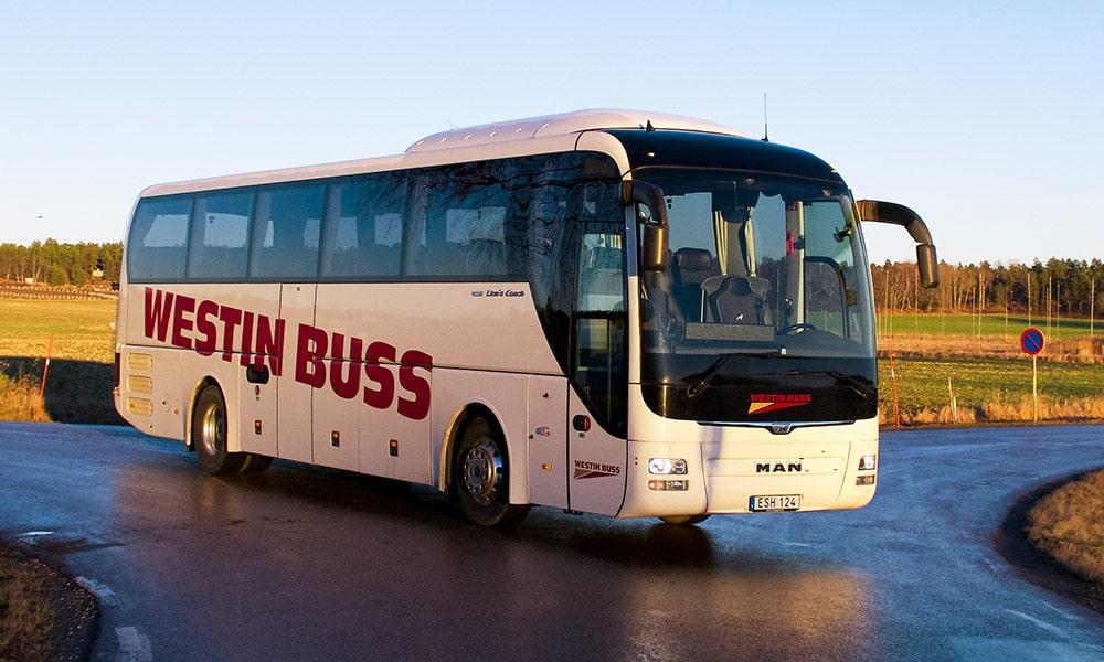 man-buss